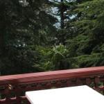 Балкон в 2-местном стандарте Корпус 1
